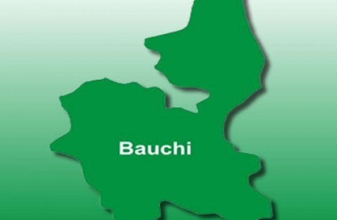Bauchi Finance Commissioner Resigns 24 Hours to Supplementary Polls