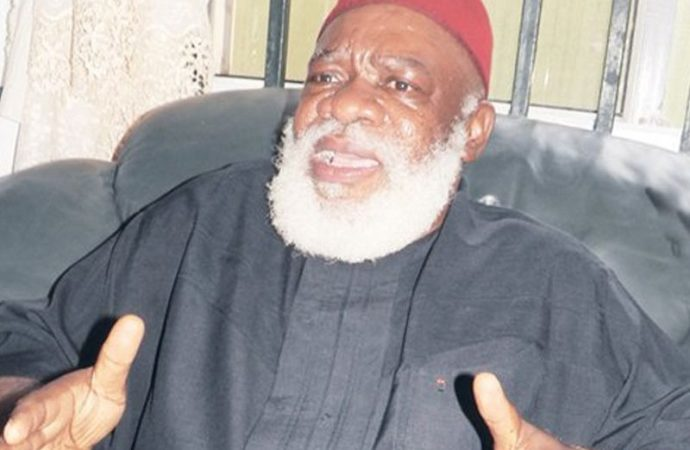 Ojukwu's family denies relationship with 'son' of Biafran warlord