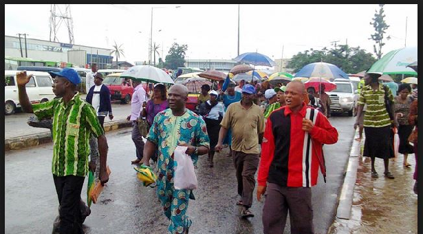 769 Osun workers caught in certificate infraction