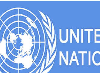UN condemns murder of aid worker in Borno