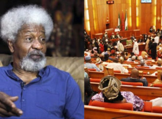 Hate speech bill: Don't impress murder by your vile action, Soyinka tells lawmakers