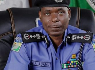 IGP assigns portfolios to promoted AIGs, others