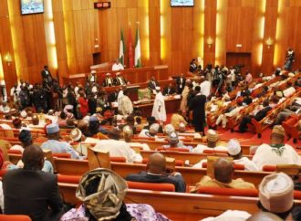 10 ex-governors, 47 others make Senate list of Constitution review