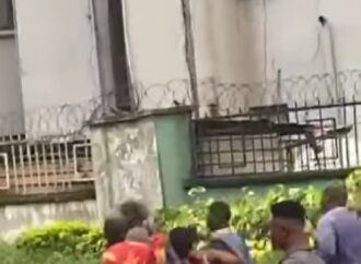 [VIDEO] How Woman was shot during looting of Covid-19 palliatives from warehouse in Benin