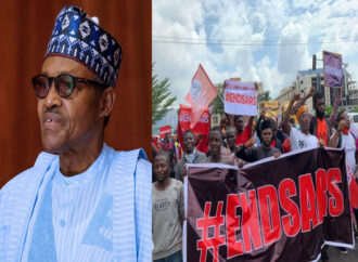 Buhari to youths: I recognise your right to peaceful protest, beware of anarchists