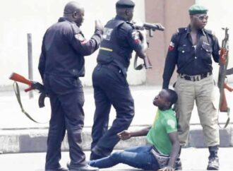 Officers arrested for human abuse face disciplinary actions — IGP