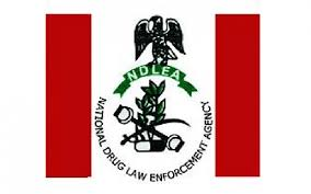 Recruitment: NDLEA releases list of 5,000 successful applicants